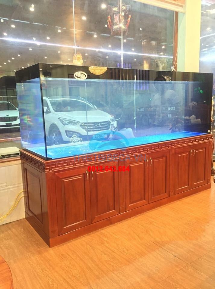 Bể cá rồng VH 234