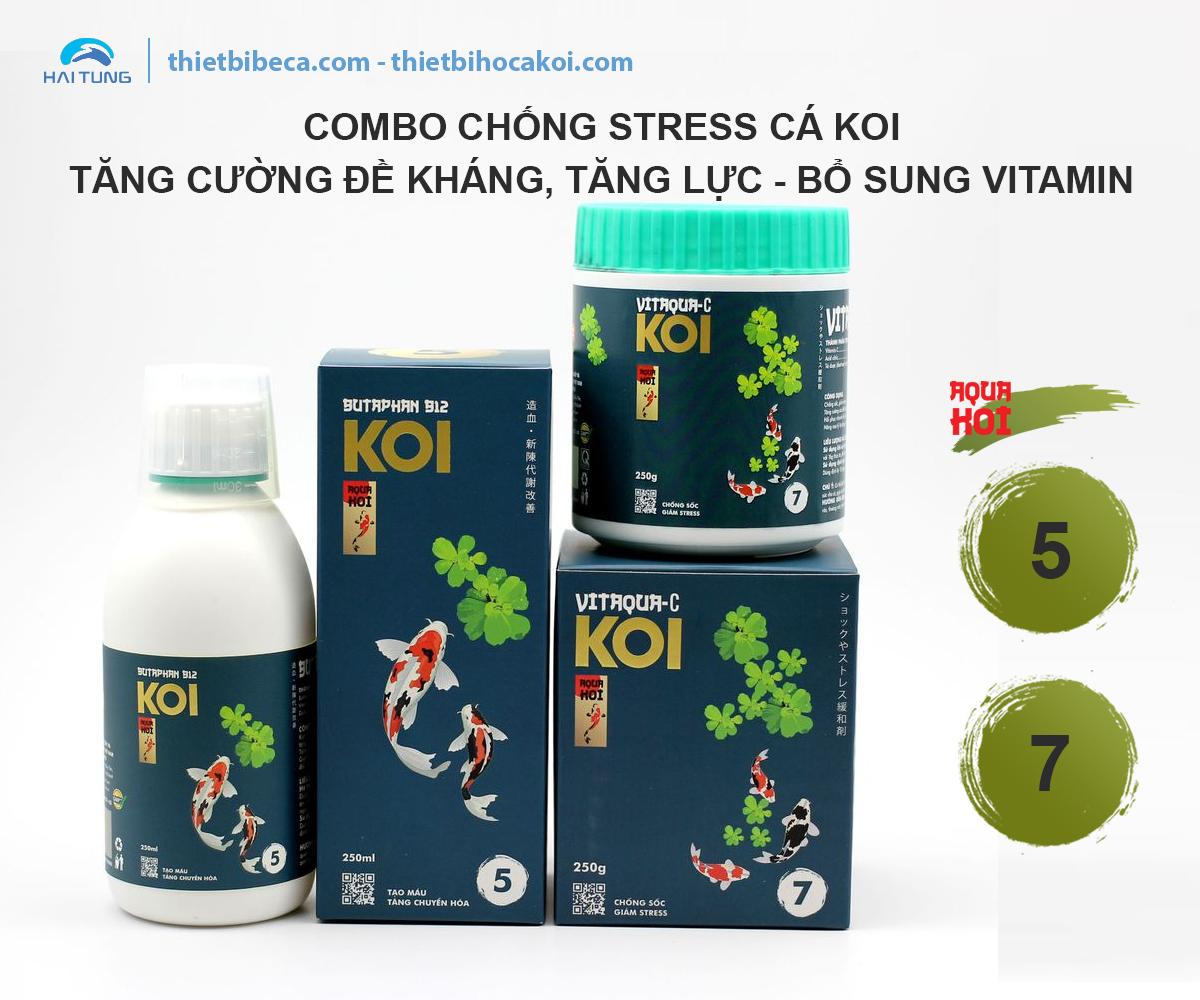 COMBO chống Stress Cá Koi 5-7 AquaKoi