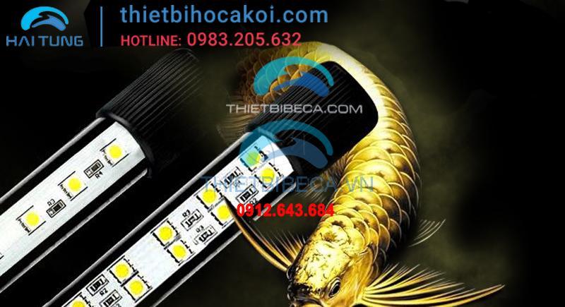 Đèn led BeamsWork 120cm 1 hàng bóng vàng