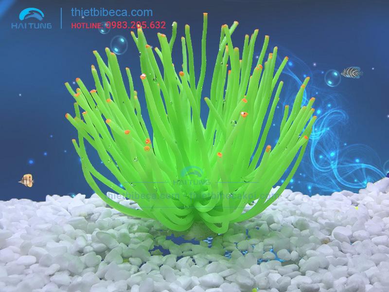 Hải quỳ trang trí to xanh