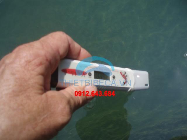 Bút đo mặn hồ koi của Singpago KoiMedic