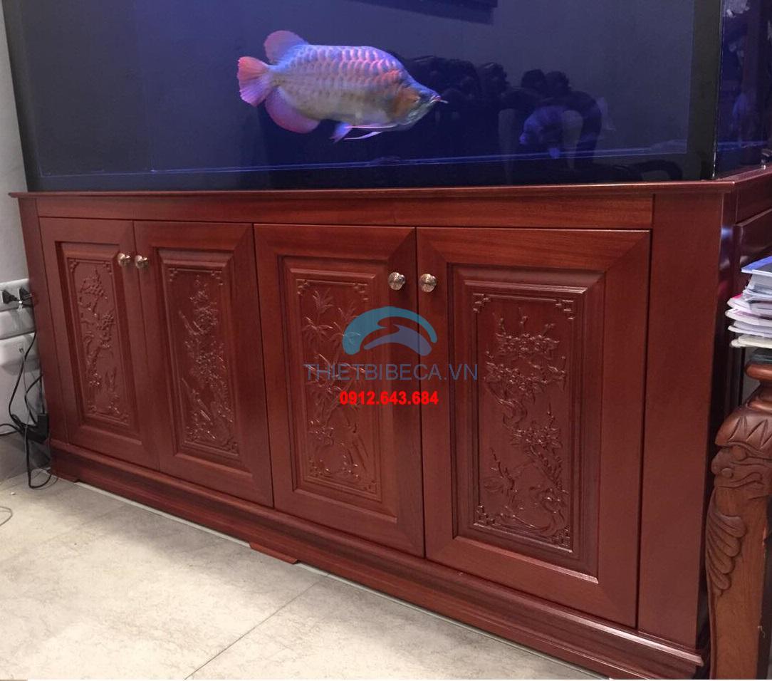 Bể cá rồng VH 176-C có chạm chân
