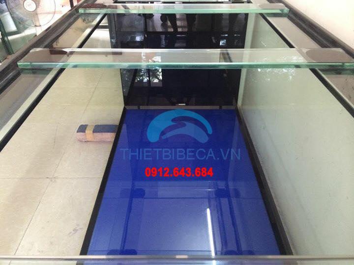 Bể cá rồng VH 215-C có chạm chân