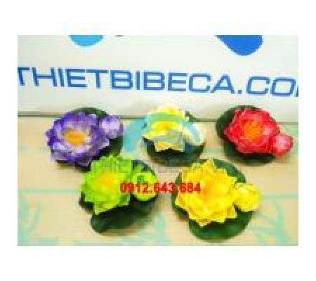 Hoa sen nổi trang trí mẫu tử
