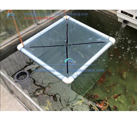 Lồng cách ly cá Koi 80 x 80 cm