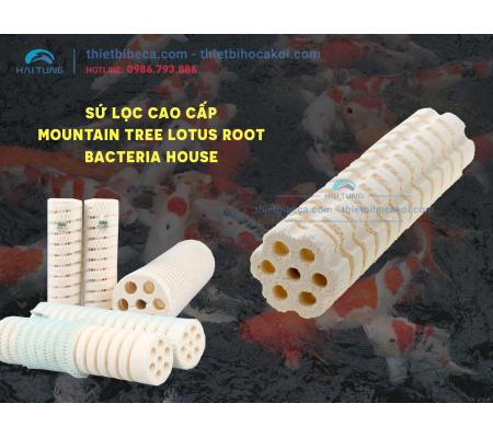 Sứ lọc cao cấp Mountain Tree Lotus Root Bacteria House