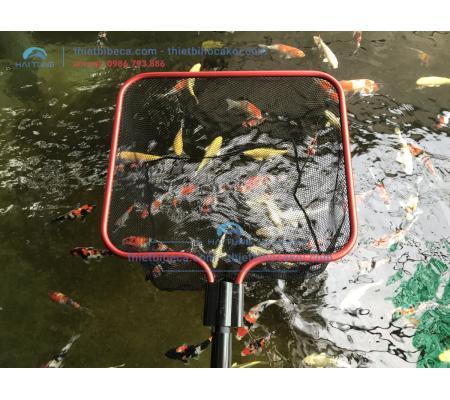 Vợt Lùa Bắt Cá Koi vuông 30cm cán dài 2m